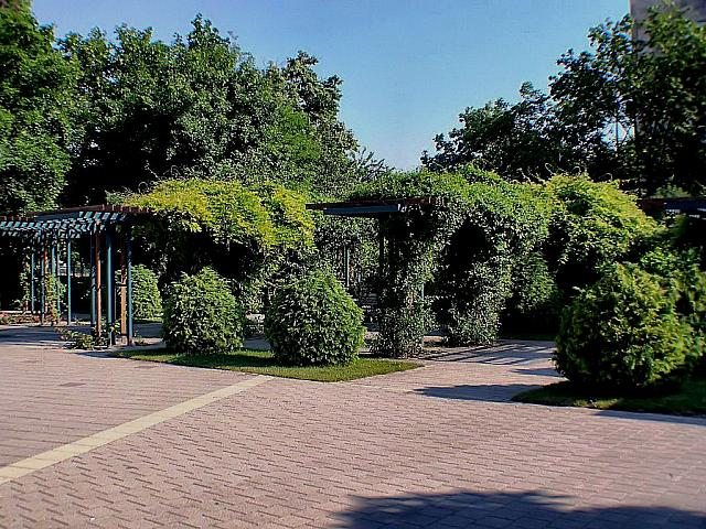 szentistvanpark 006